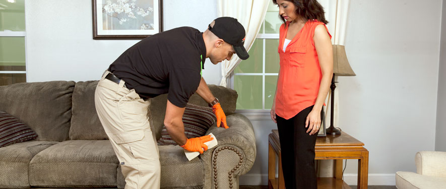 Emmaus, PA carpet upholstery cleaning
